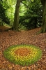 Натуральный коврик